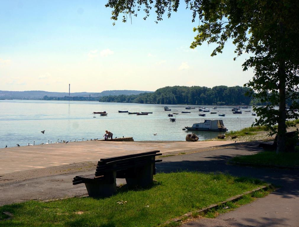Ufer Donau Belgrad