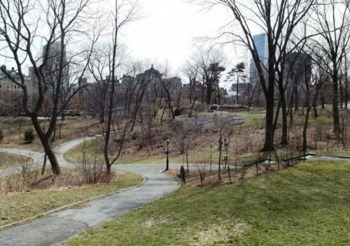 Central Park New York 1