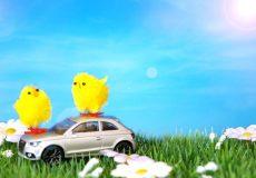 Frohe Ostern – 2 Küken sitzen auf einem Auto