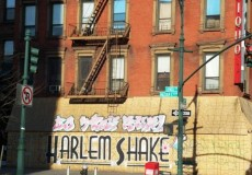 New York Harlem Shake