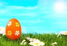 Frohe Ostern – Osterei auf der grünen Wiese
