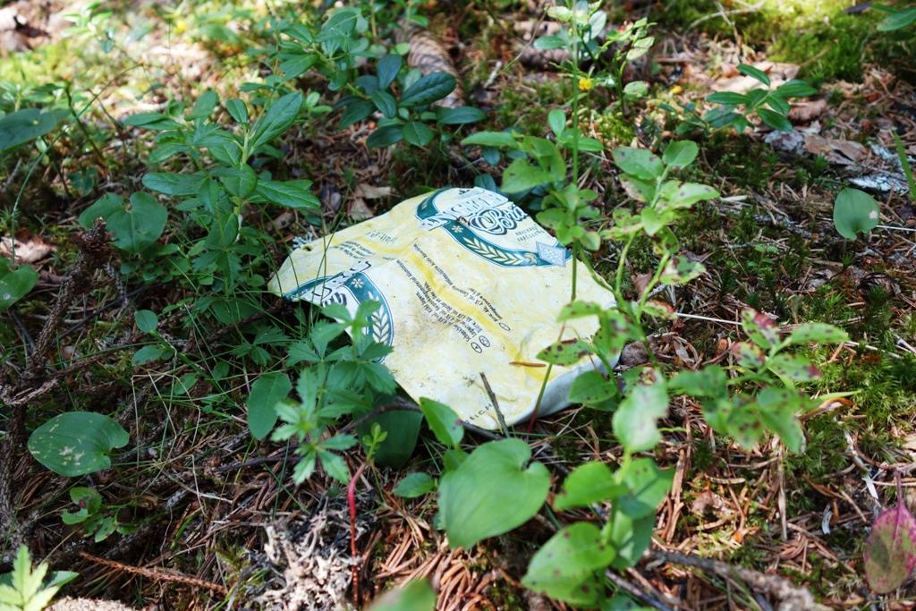 Umweltverschmutzung Bierdose im Wald
