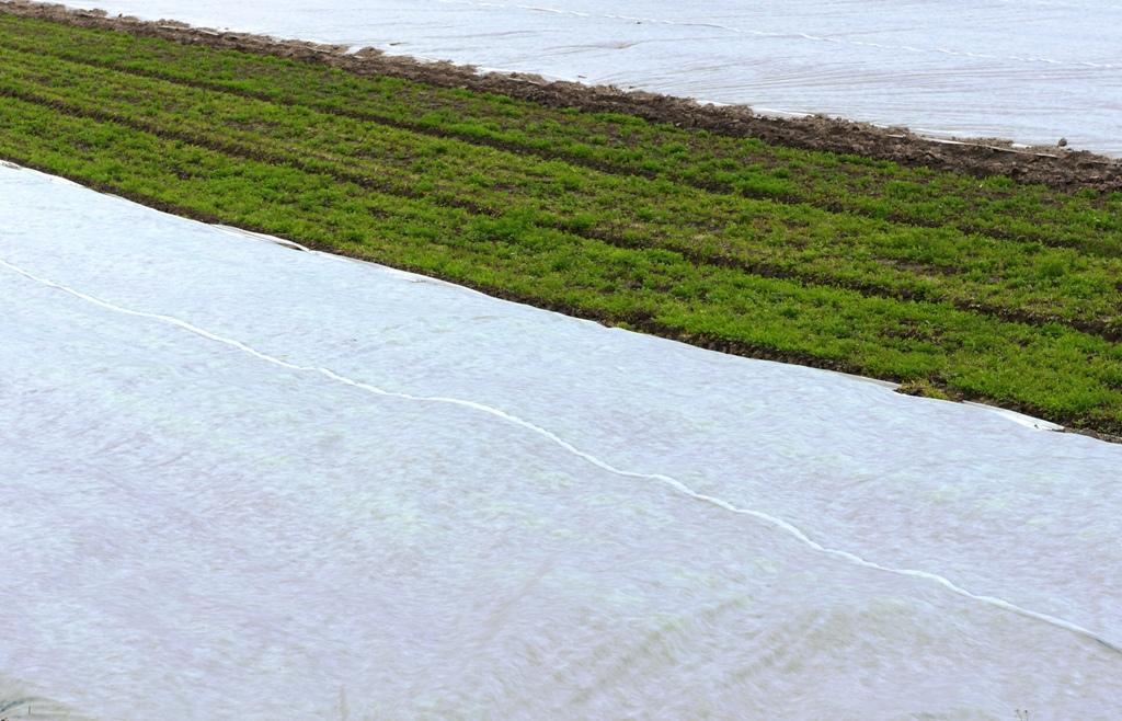 Vliesabdeckung Agrar Acker Feld
