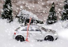 Auto mit Tannenbaum im Schneefall