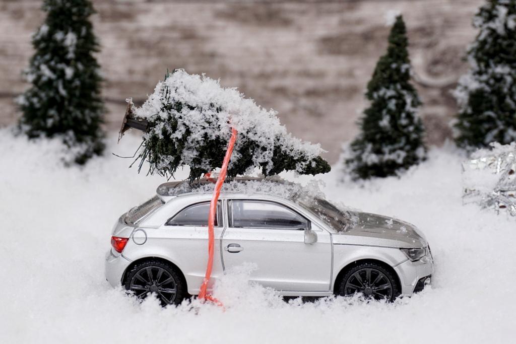 Auto mit Tannenbaum auf dem Dach