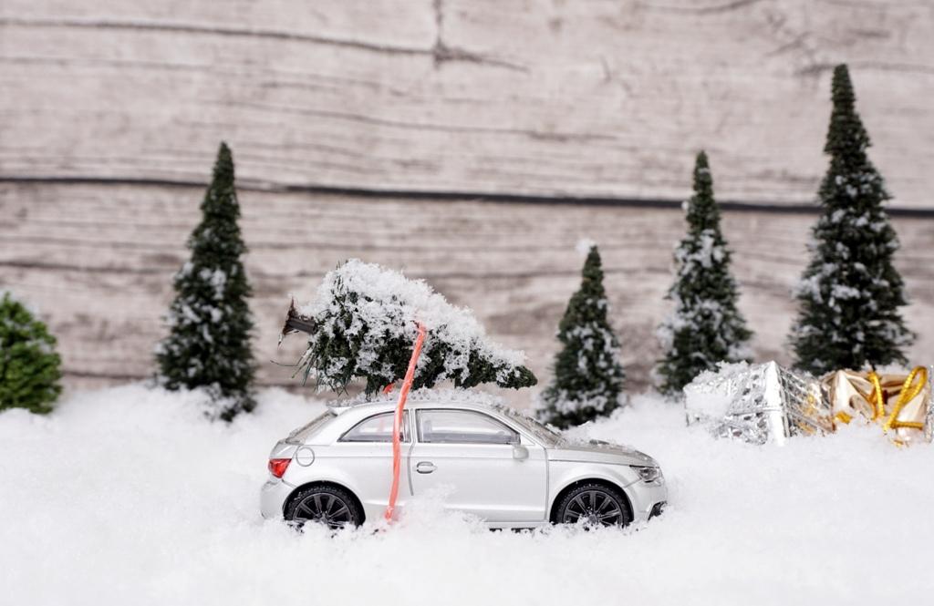Bald ist Weihnachten – Weihnachtsbaum auf Autodach