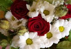 Blumen / Rosen Blumenstrauß