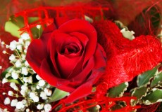 Blumenstrauß – Rote Rose mit Herz