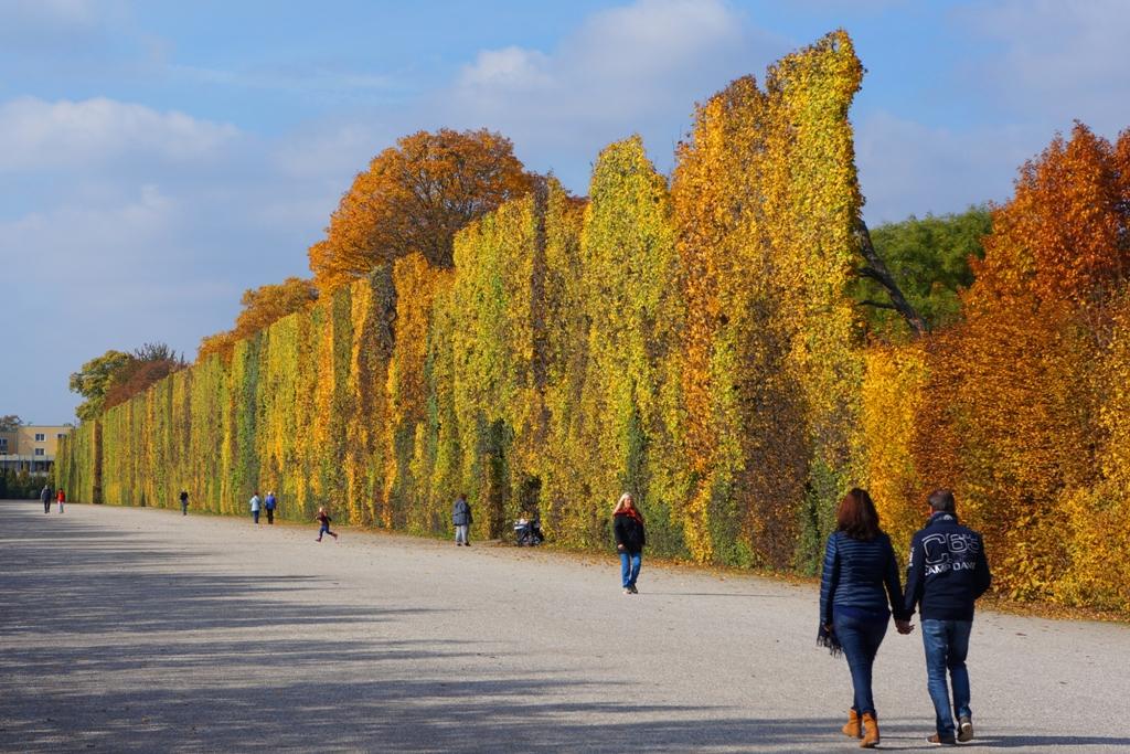 Bunte Herbstwand