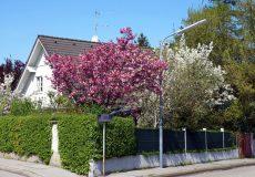 Frühling Einfamilienhaus