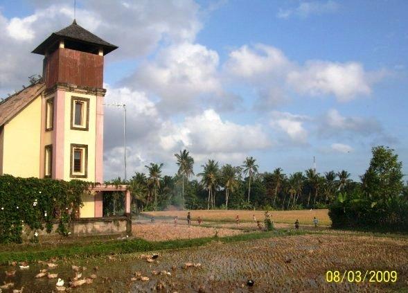 Felder Indonesien