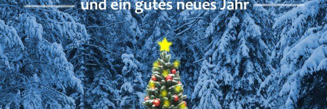frohe weihnachten hochformat