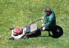Rasenmähen Gärtner Hausmeister