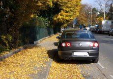 Herbstlaub Straße