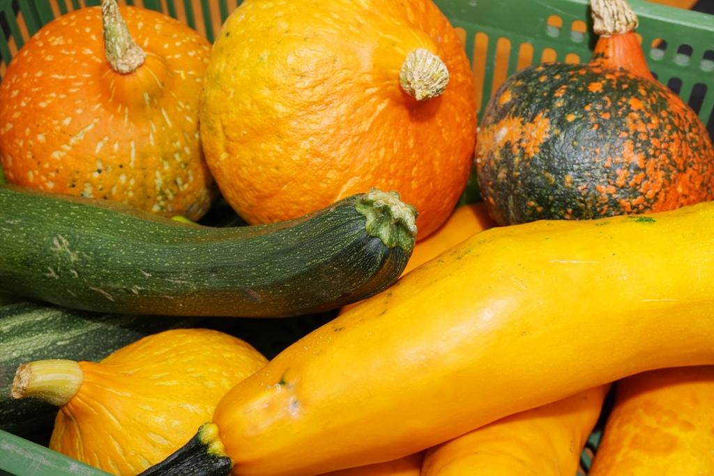 Gemüsekiste mit Zucchini
