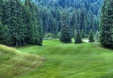Golfplatz Wald Seefeld
