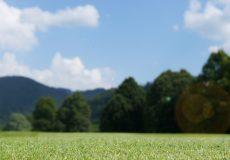 Golfplatz Wiese