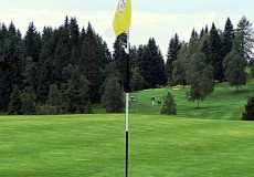 Golfplatz Green
