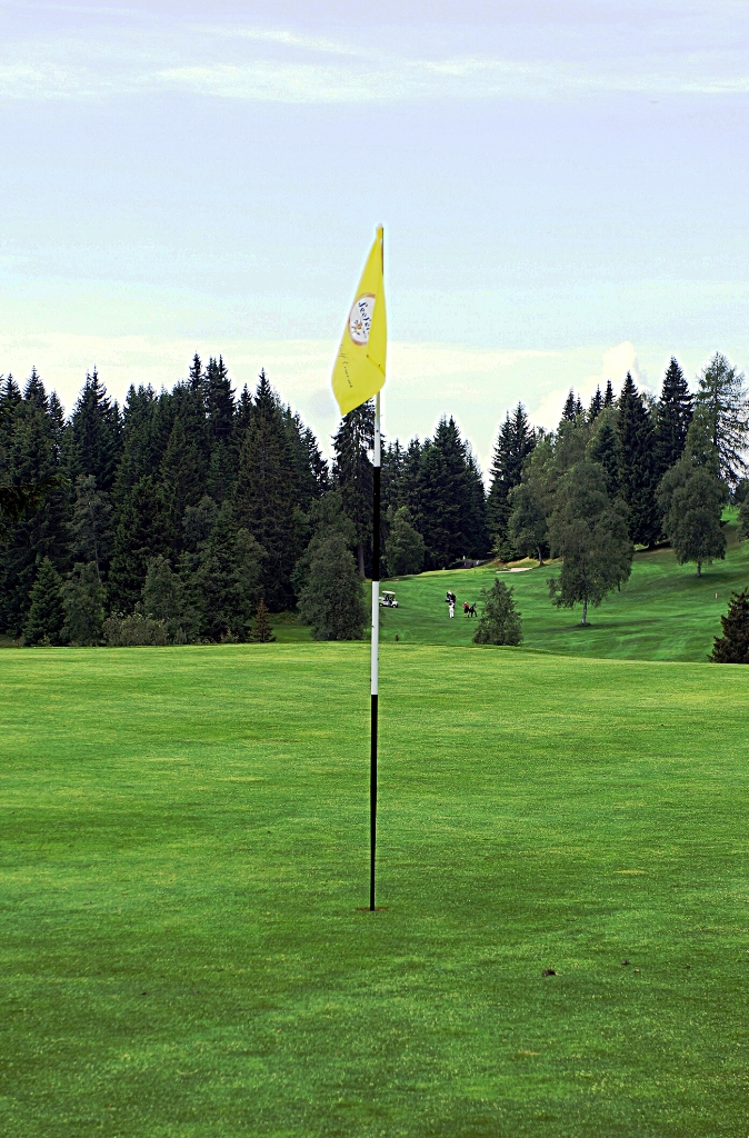 golfplatz_green