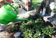 Grabpflege – Gießen