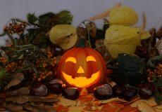 Halloween Kürbis 2