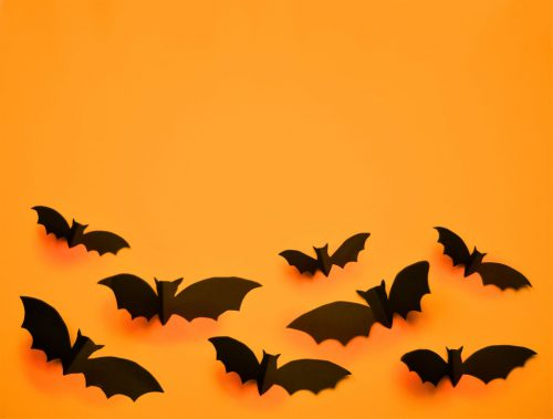 Happy Halloween Bild