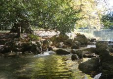 Gewässer und See im Herbst