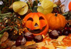 Halloween Herbst 3