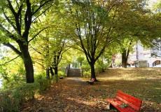 Herbst, Laub und Blätter