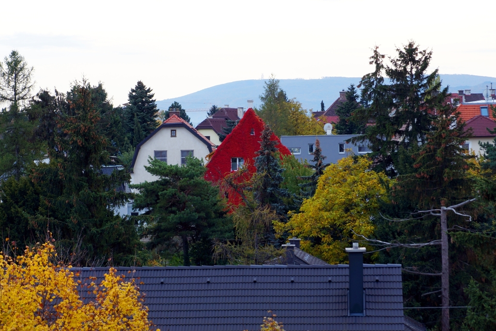 "Das ""Rote Haus"""