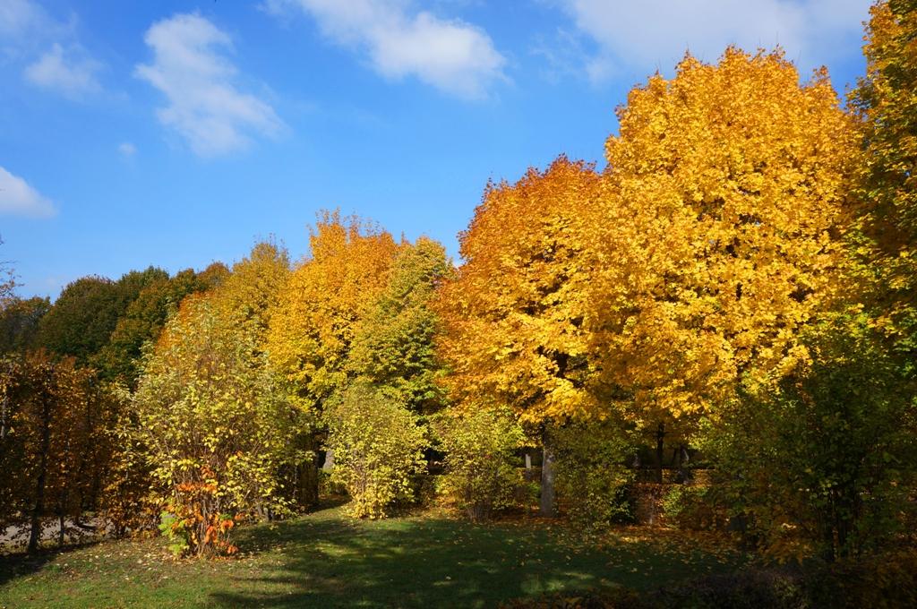 Wunderschöner Herbst – Herbstbeginn