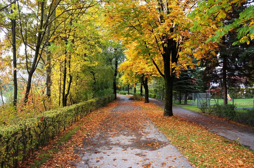 Promenade, Herbstweg