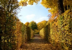 Buntes Herbstwunderland