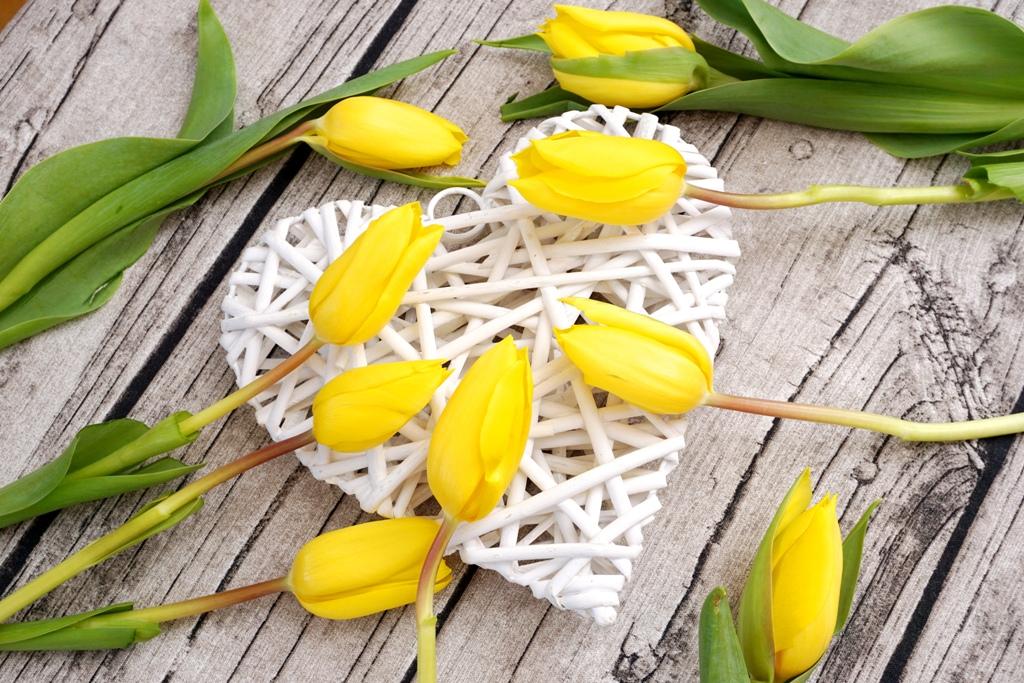 blumen ein herz mit vielen gelben tulpen lizenzfreie fotos bilder kostenlos herunterladen. Black Bedroom Furniture Sets. Home Design Ideas