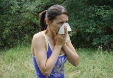 Heuschnupfen Pollenallergie