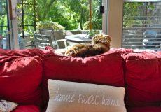 Willkommen daheim – home sweet home