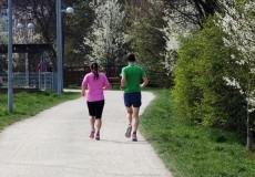 Jogger Jogging Joggen