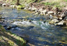 Fluss mit leichter Strömung