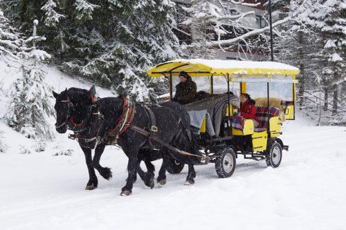 Kutschenfahrt Schnee