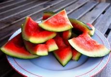 Melonen Schalen