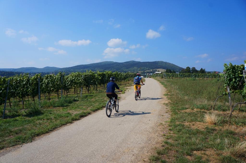 mountainbike-urlaub2