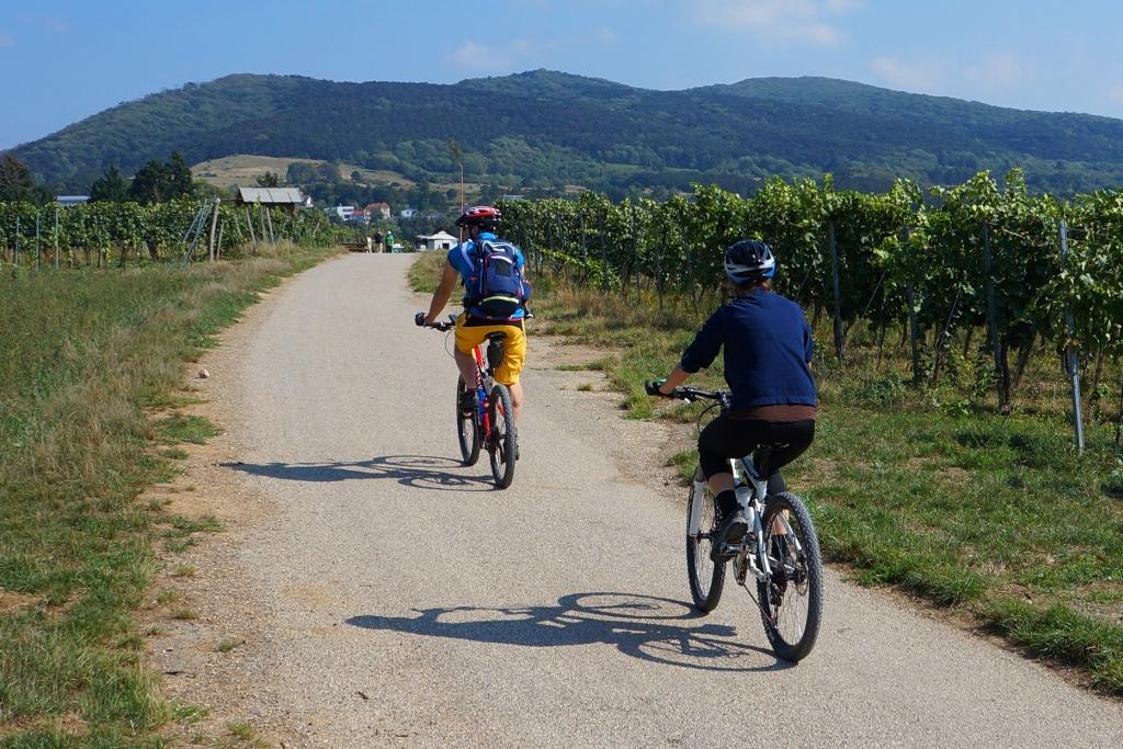 mountainbike-urlaub3