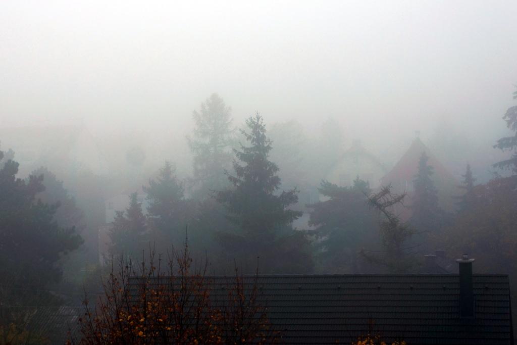 Nebelwand Herbst