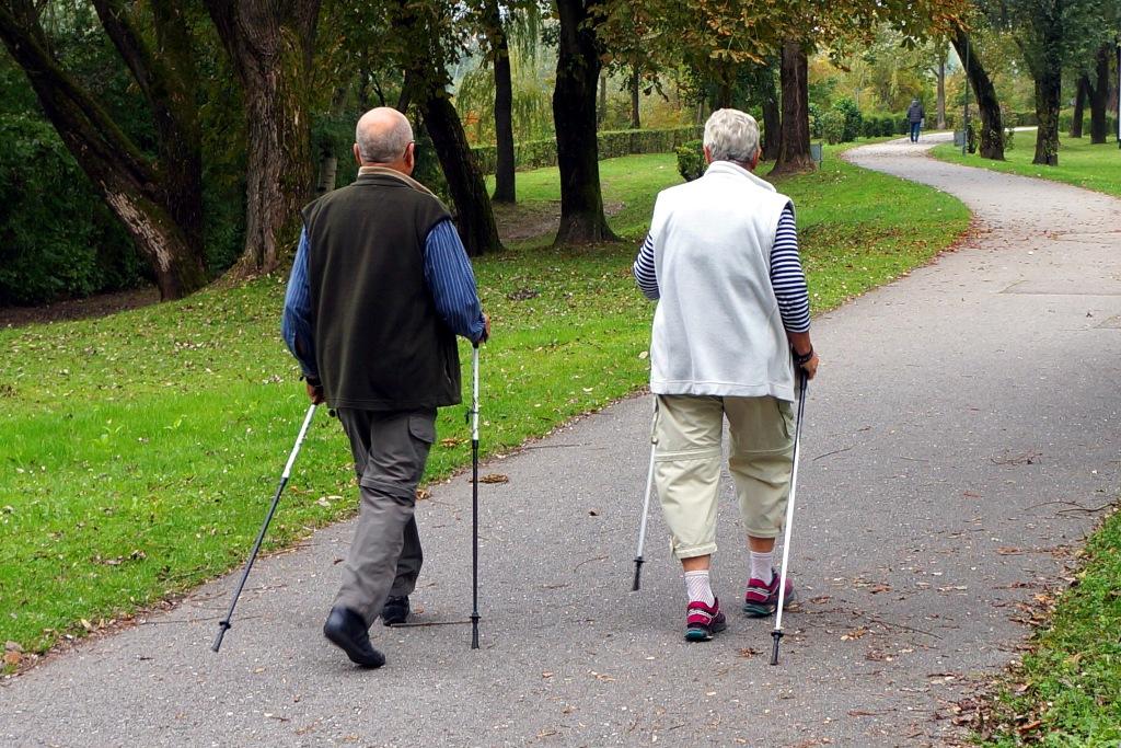 Senioren - Nordic Walking - lizenzfreie Fotos / Bilder ...