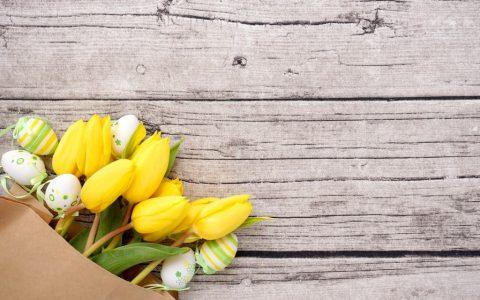 Frohe Ostern – gelbe Tulpen und Ostereier / Blumen
