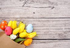 Ostern – Tulpen und Ostereier / Blumen