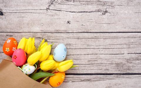 Frohe Ostern – Tulpen und Ostereier / Blumen