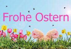 Ostern, Osterhase, Blumenwiese