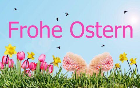 Frohe Ostern, Osterhase, Blumenwiese
