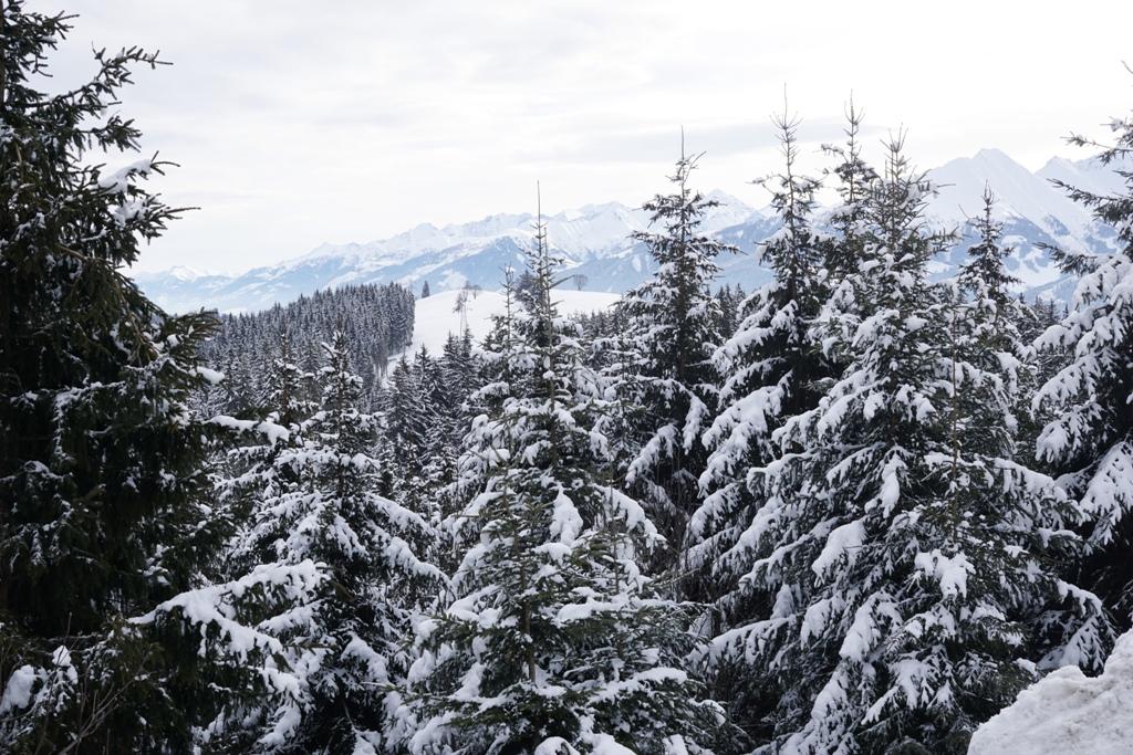 Schneelandschaft, Winterlandschaft